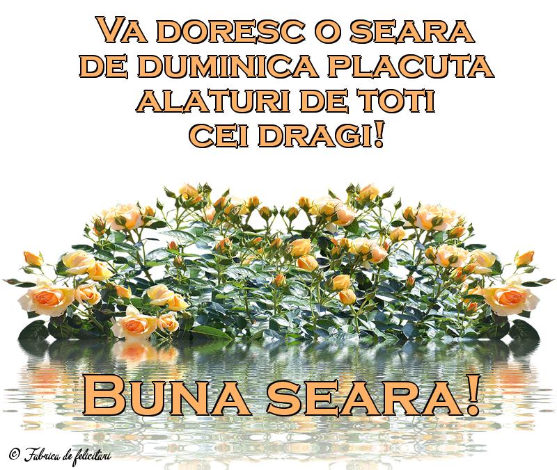 Felicitari de Seara - Bună seara!