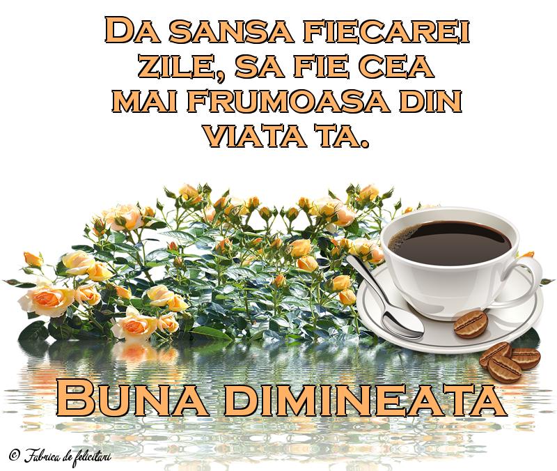 Felicitari de Dimineata - Buna dimineata