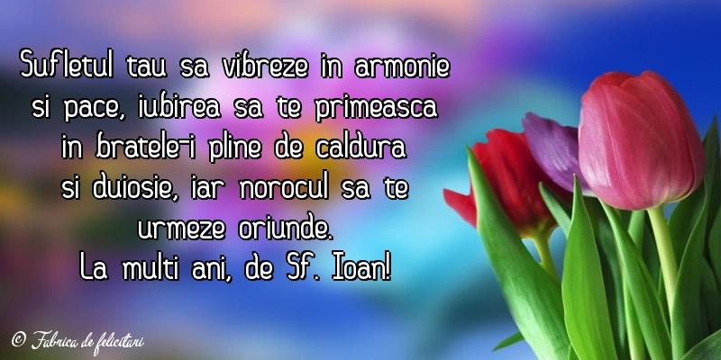 Felicitari de Sfantul Ioan - La mulţi ani, de Sf. Ioan!