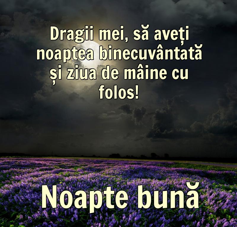 Felicitari de Noapte - Noapte bună