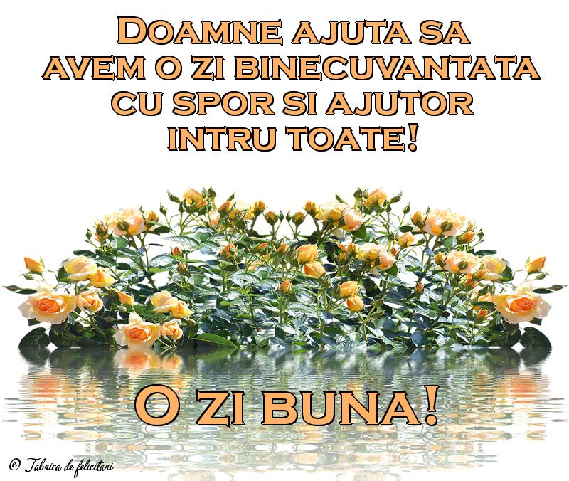 Felicitari de Amiaza - O zi bună!
