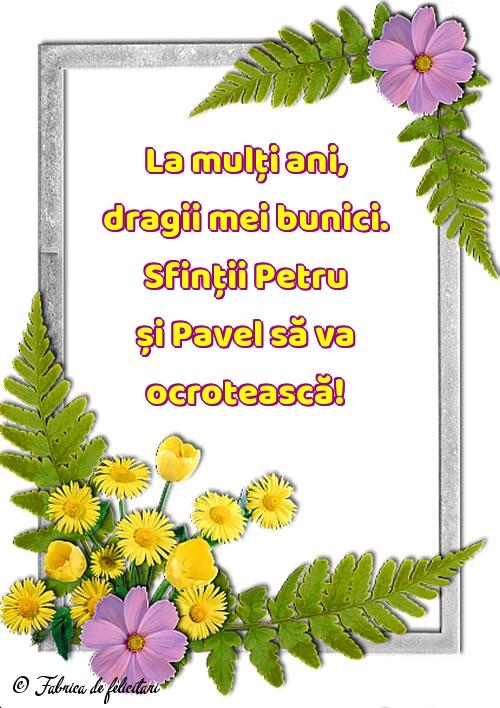 Felicitări de sfintii Petru si Pavel